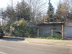 brachflaeche dieskaustrasse knautkleeberg-knauthain 32961 1174104