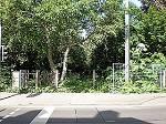 Brachfläche Dieskaustraße 374